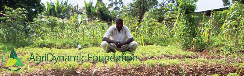 Maatschappelijk initiatief Agri Dynamic Foundation