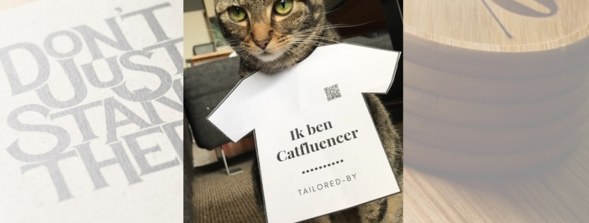 Catfluencer - credit: Tailored-by
