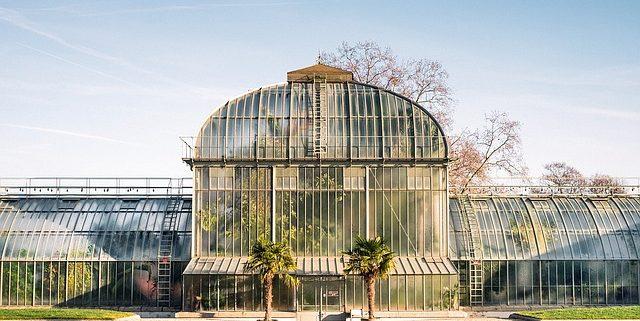Plantenkassen - innovatie - C-straling - Greenhouse