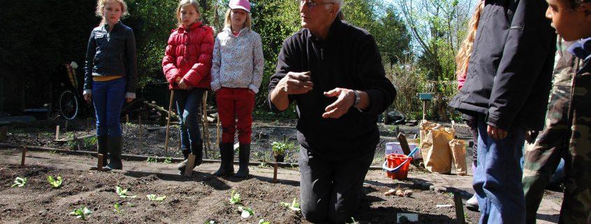 Uitleg over groentes | Groen en Doen