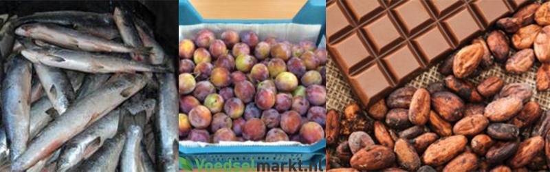 Maatschappelijk initiatief Voedselmarkt NL